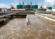Synergistic use of Microbes & Algae in Wastewater Treatment