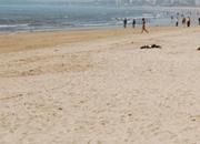 Puir Beach