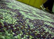 Carpet Preconditioning