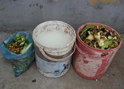 Kitchen waste digester