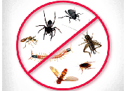 Online system for pest control