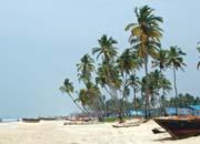 Cleaning Goa Beaches