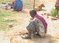 Rodent-eating Musahars falling prey to kala-azar