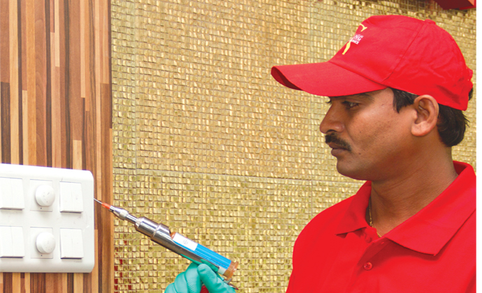 Sterling Pest Control's Holistic Approach to Pest Management