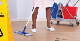 Seasonal Challenges of Housekeeping