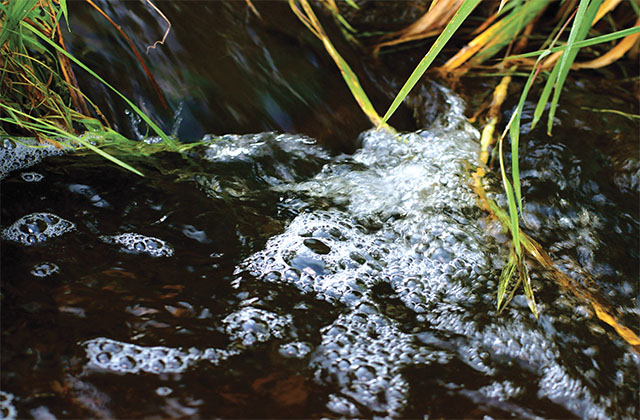 Eco-logical Water Quality Criteria for Zero Discharge