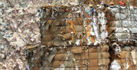 Startups on Waste Management