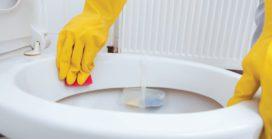 Hand Gloves & Compliances