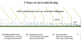 Solar Sludge Drying System