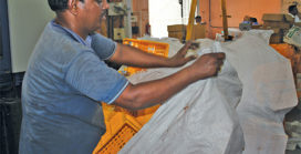 Mrinmoyee Supply Pvt. Ltd Journey of a Service Provider turning into an Entrepreneur