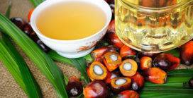 Minimize palm oil in cleaning products
