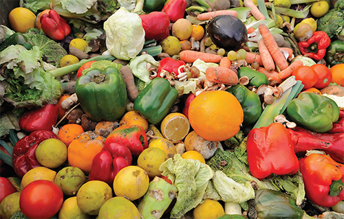 Reducing & transforming organic food waste