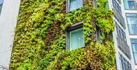 Maharashtra tops states for green buildings